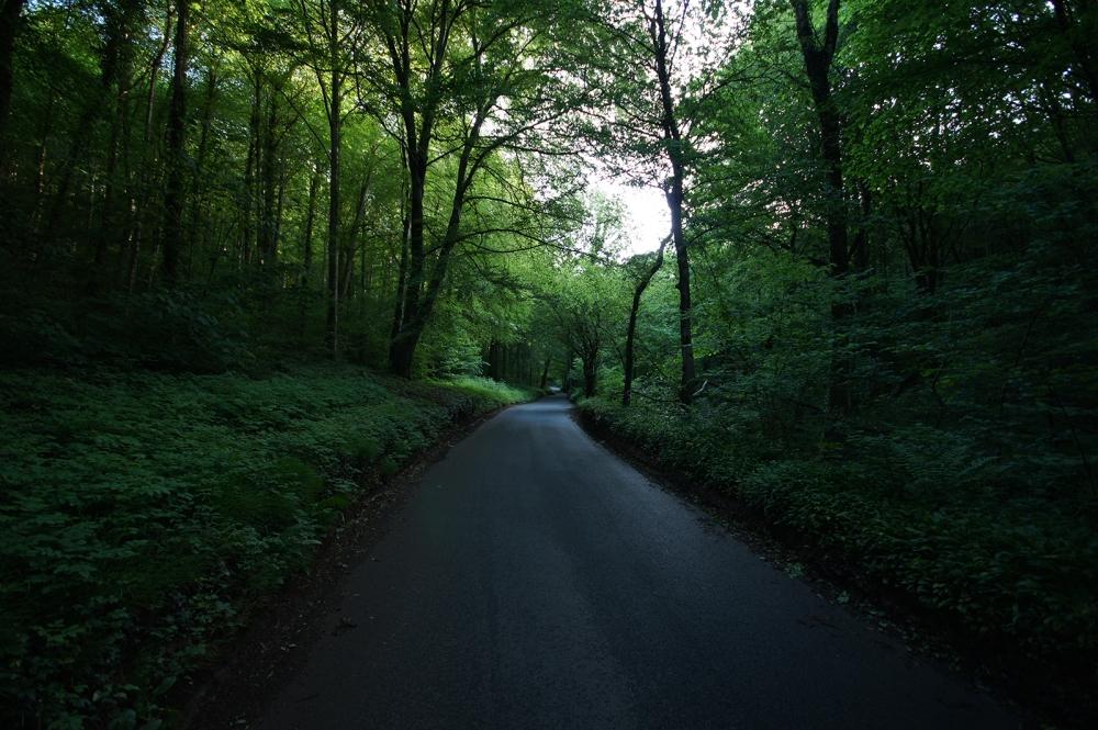 Kieran Rae Forest Wood Road Wales