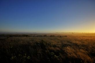 Kieran Rae Borderwalk Outback Australia Field