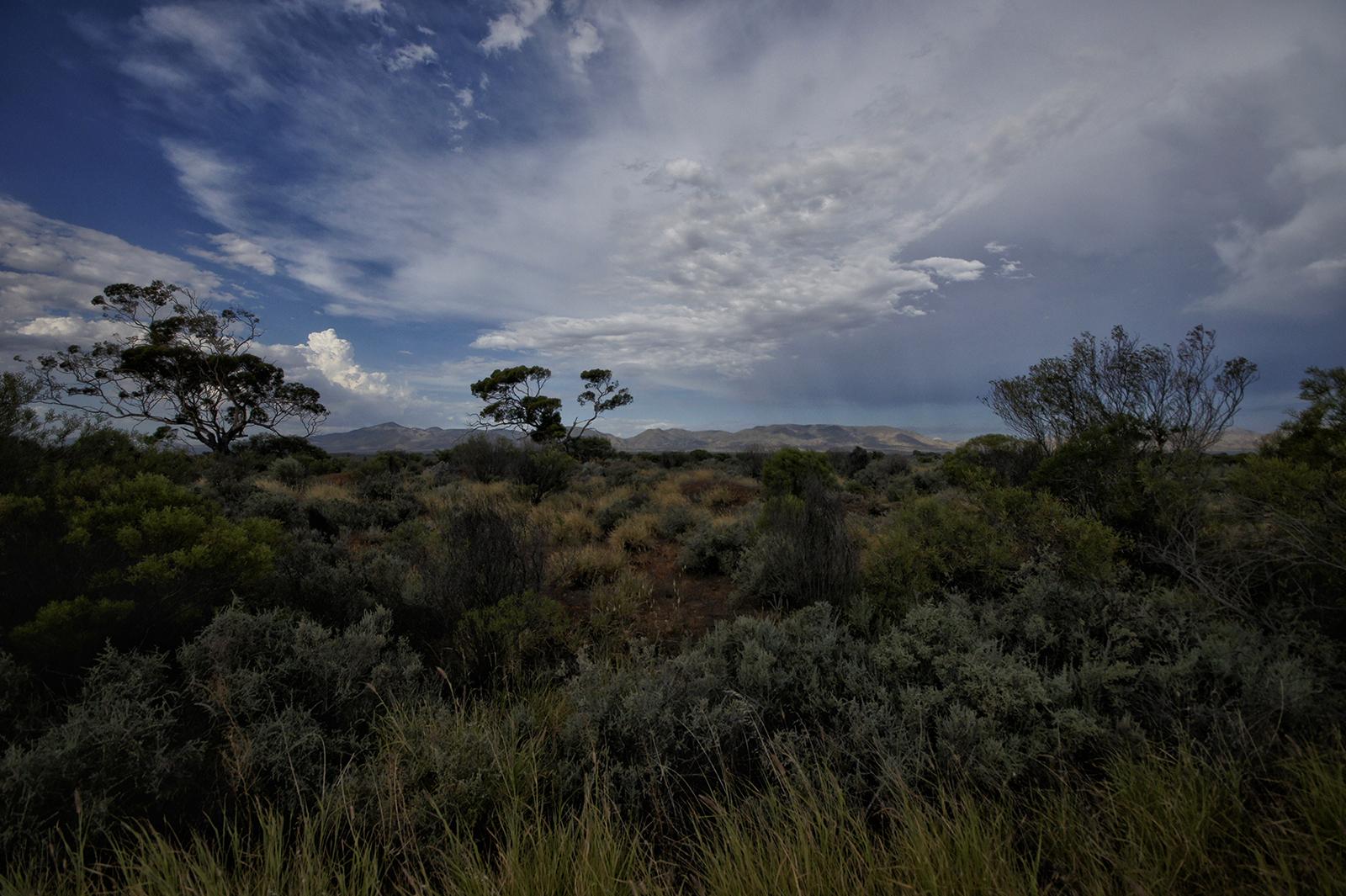 Kieran Rae Borderwalk Outback Australia Range