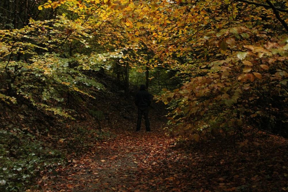 Kieran Rae Autumn Portrait Forest Wood