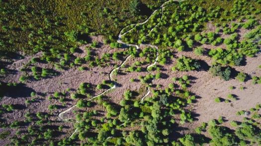 Kieran Rae Dee Valley Llangollen One Giant Leap Downhill Mountain Bike Trails Tracks Wales